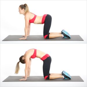 Cat / Cow exercise for back pain