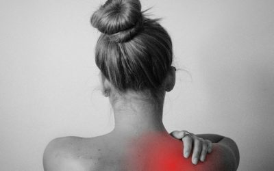 How the way we sit effects our back muscles